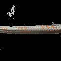 Fuel hose - 8 mm (1m)
