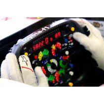 FIA homologirane tekmovalne rokavice